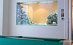 dinding aquarium
